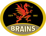Brains Logo 300DPI